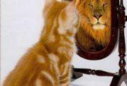 چگونه به کمال و خودباوری برسیم