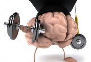 راه و روش های مفید برای محافظت از مغز