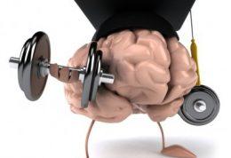 آلزایمر در سنین پیری و این پیشگیری ها