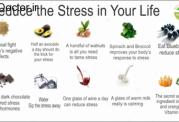 مواد طبیعی و بدون ضرر برای کم کردن اضطراب