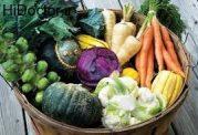 این سبزیجات زمستانی را زیاد مصرف کنید!