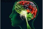 پیشگیری از ابتلا به مشکلات روحی در پاییز با تغذیه