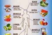 خوراکی های مفید برای قسمتهای مختلف بدن