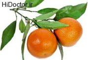 نارنگی را از قلم نیندازید