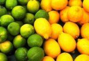 با لیمو شیرین معده خود را بیمه کنید!