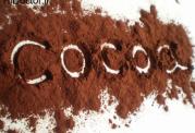 تاثیر کاکائو بر هوش سالمندان