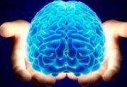 عوامل موثر بر پیری زودرس مغز