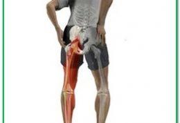 کاهش درد سیاتیک به کمک طب سنتی