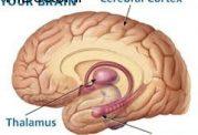 افزایش توانایی ذهن با این روش ها