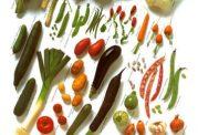 مبتلاشدن به کم خونی با رژیم گیاهی
