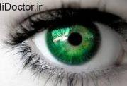 حرکات چشم و خواندن موثر