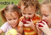 اهمیت مصرف میوه سیب