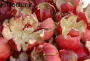 پوست انار خشک شده و فواید استفاده از آن