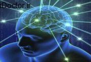 عملکرد ذهن افراد با دو زبان