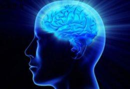 زمینه سازی برای پرورش ذهن و افزایش حافظه