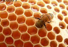 ارزش غذایی عسل