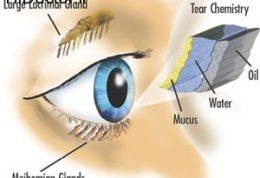 اهمیت خشکی چشم چیست؟