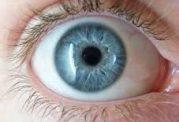 آشنایی با ساختمان و عمل چشم اصول آناتومی چشم