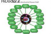 ارتباط بیماریهای میتوکندریایی  با کمبود اکسیژن