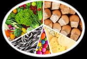 مواد لازم و مهم برای تغذیه روزانه