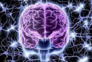 بروز مشکلات حافظه با عصبانیت