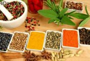 داروهای گیاهی موثر و مفید برای بدن