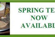 انواع دمنوش های گیاهی مخصوص فصل بهار