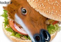 مک دونالد و گوشت حیوانات