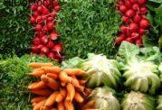 خوراکی های بهاری مناسب برای لاغرشدن