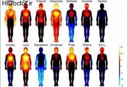 واکنش های احساسی و تغییرات مختلف در بدن