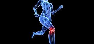 مراقبت از ماهیچه ها در حین ورزش
