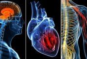 تهدید سلامتی بدن با این نشانه های خطرناک