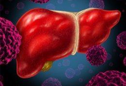 راه حل های طبیعی برای رفع آنزیم های کبد