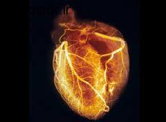 اسکن قلب  و دانسته های مفید در این باره
