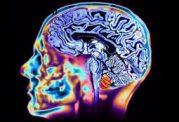ارتباط بین اضطراب و حافظه چگونه است؟