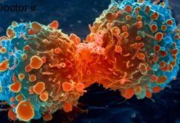 پیشگیری از ابتلا به سرطان