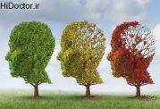 آلزایمر و زندگی افراد در کودکی