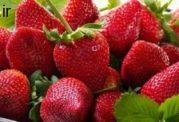 ویتامین ث را از این میوه ها دریافت کنید