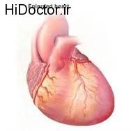پیشگیری از بیماری قلبی با ارتباط جنسی سالم