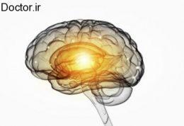 مغز در ساعات مختلف روز