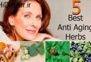 مراقبت های مهم در برابر پیری پوست
