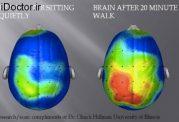 تاثیرات مختلف ورزش بر مغز