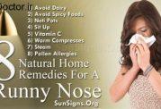 مواد خوراکی طبیعی برای رفع آبریزش از بینی