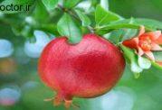 کنترل دیابت با این میوه