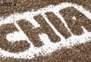 با دانه چیا همراه باشید