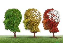 کمک به بیمار آلزایمری
