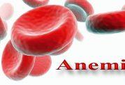 خوردنی های موثر برای رفع کم خونی