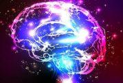 ابتلا به اسکیزوفرنی چه ارتباطی با سلول های گلیال دارد؟