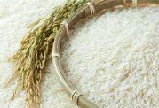 نکات مهم قبل از خرید برنج
