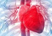 بررسی امراض قلبی و عوامل پنهانی ایجاد کننده آن ها